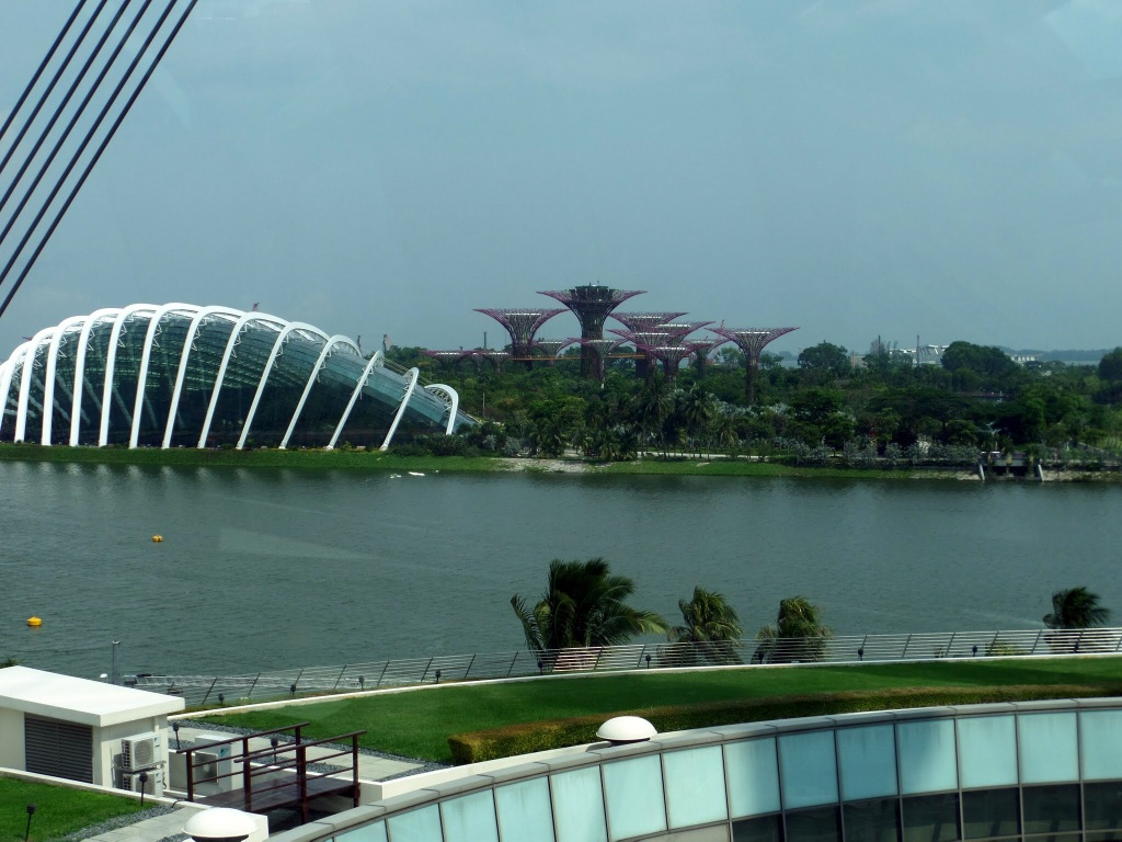 View of Supertree Grove from The Singapore Flyer