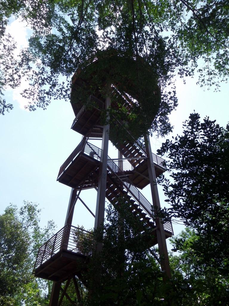 Chek Lava Boardwalk birdwatching tower