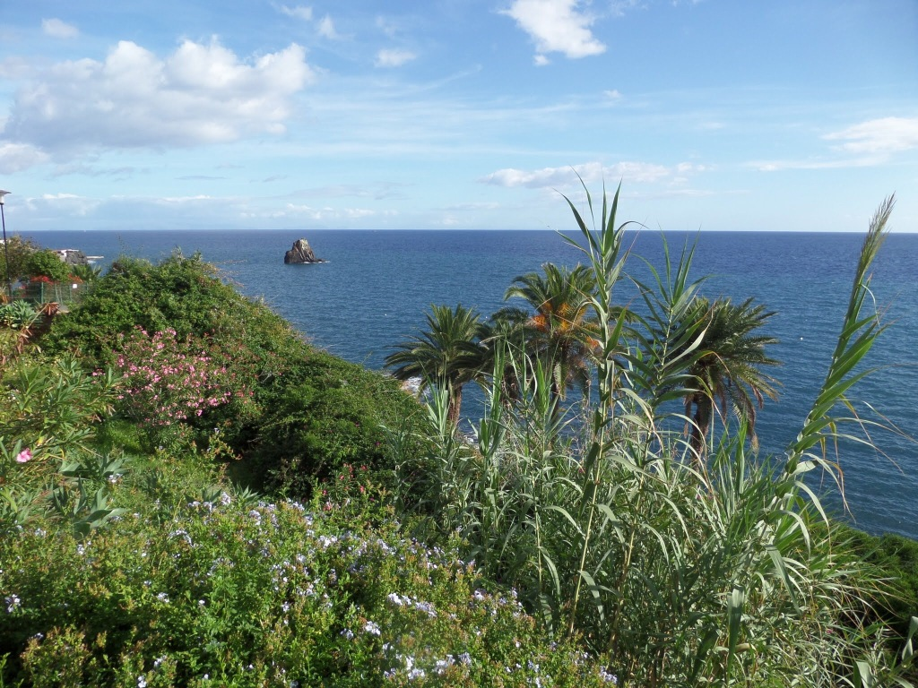 Funchal Coastal path
