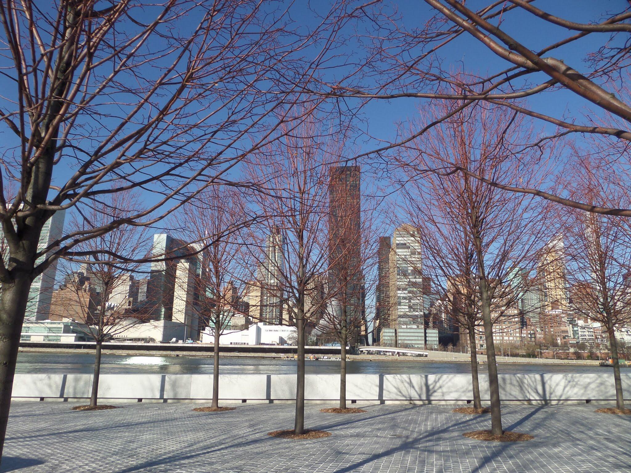 Franklin Roosevelt Four Freedoms Park, New York City
