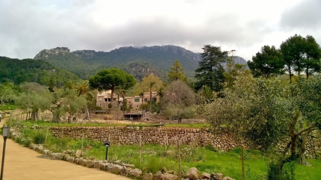 Vintage train ride from Palma to Soller