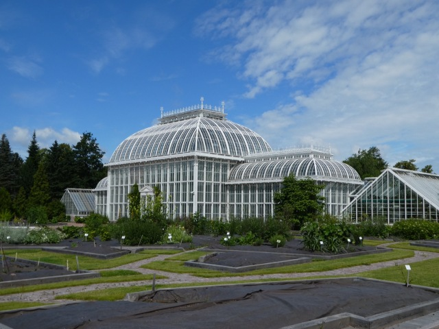 The Palm House, Helsinki
