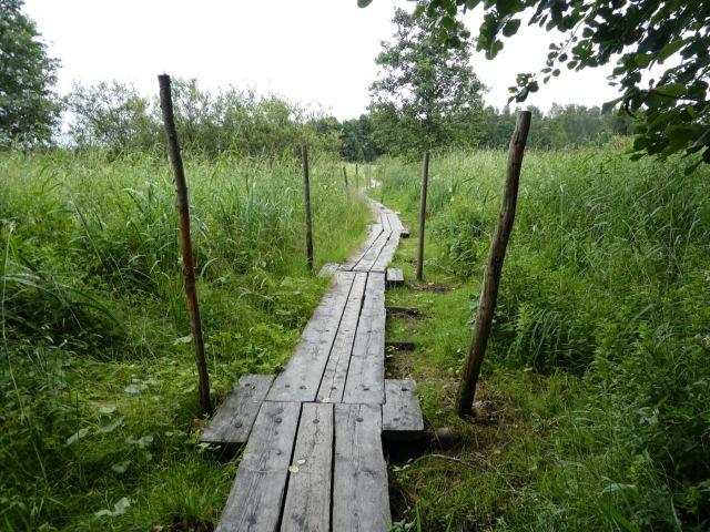 Pornaistenniemi nature walk, Helsinki
