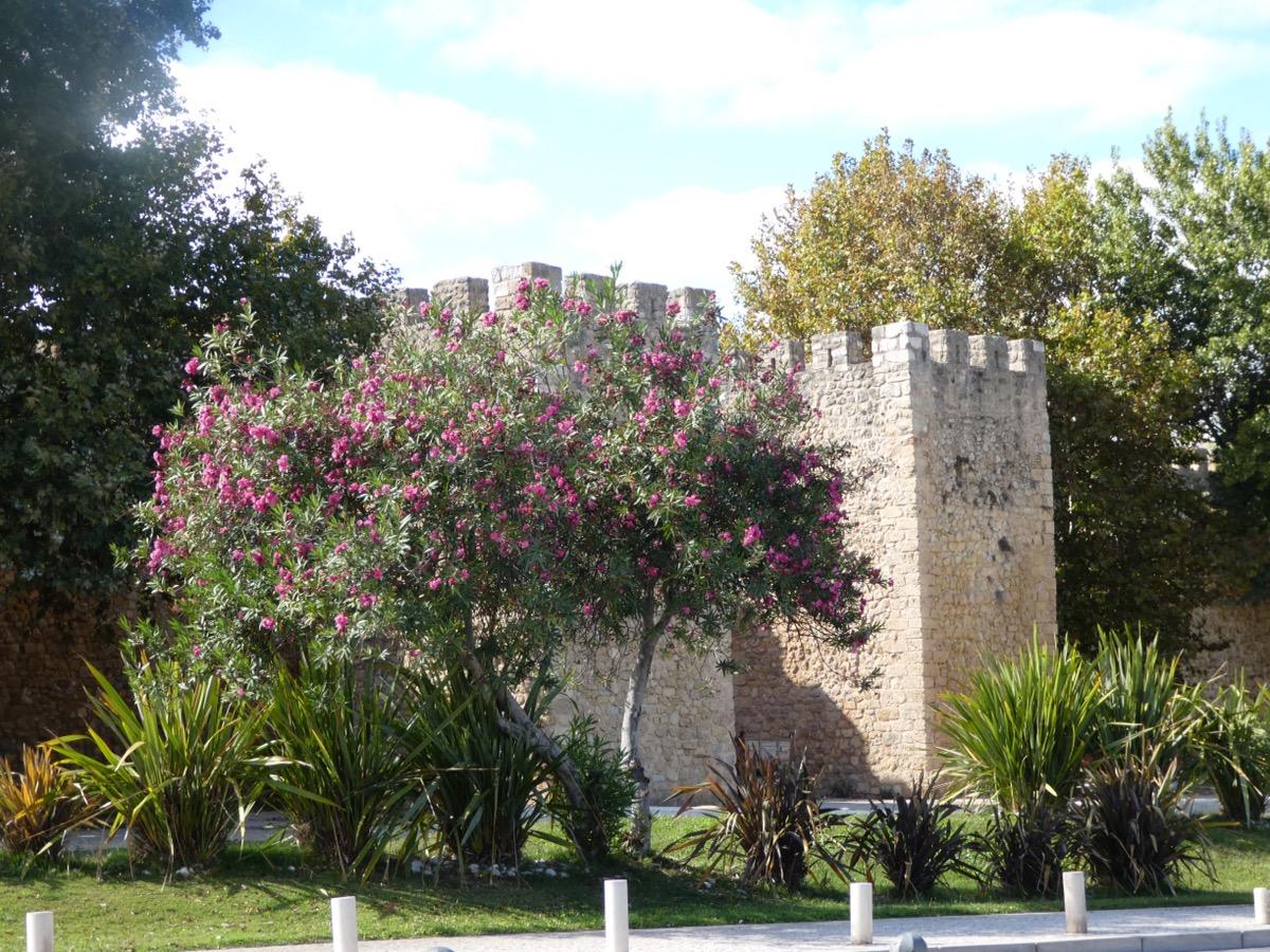 Old city walls, Lagos, Algarve