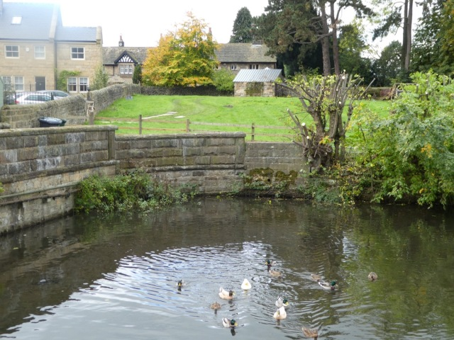 Corn Mill Pond, Burley-in-Wharfedale